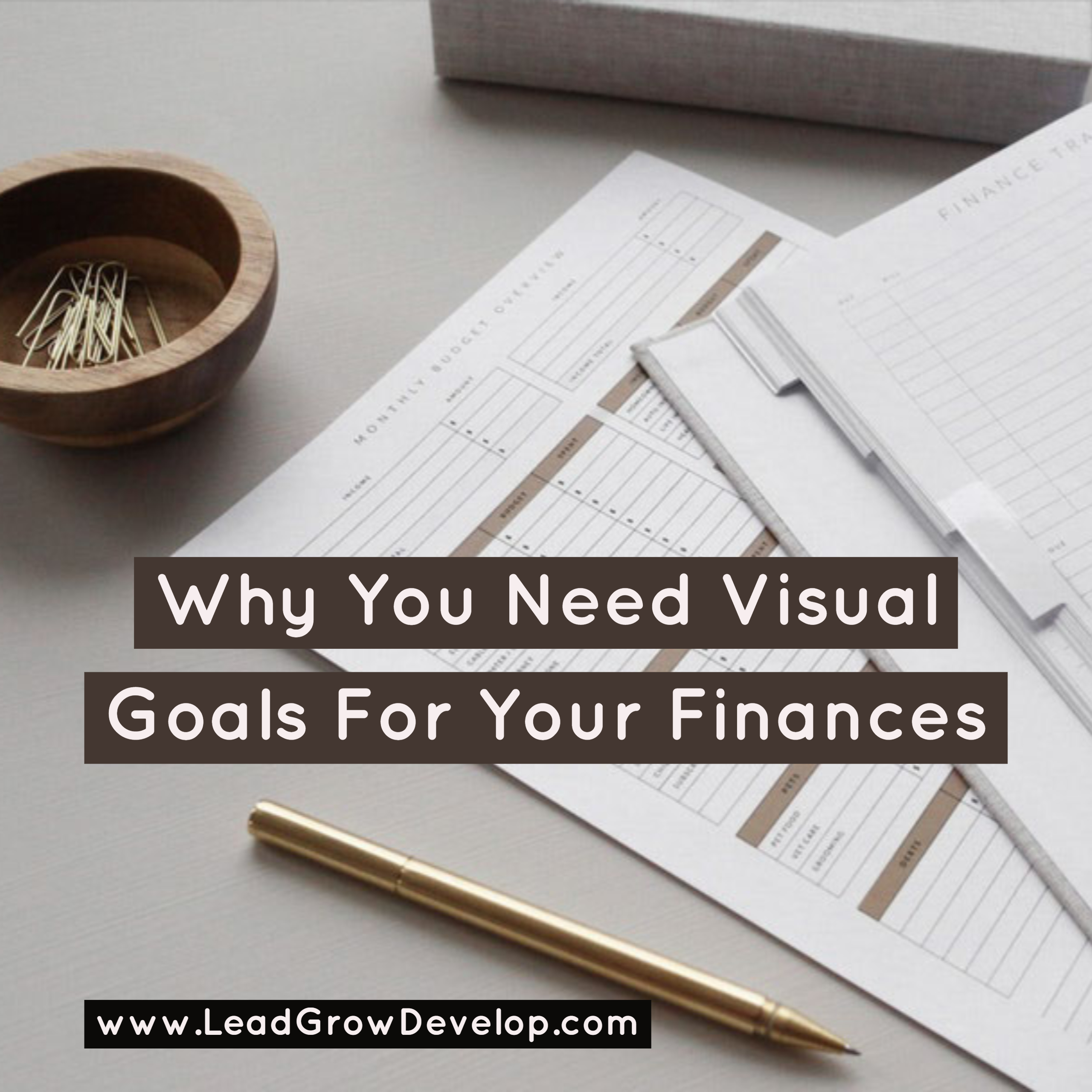 https://leadgrowdevelop.com/fix-your-companys-financial-health-with-this-guide/