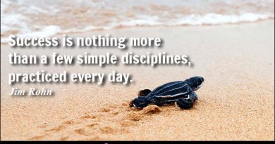 success-is-nothing-more-than-by-jim-rohn