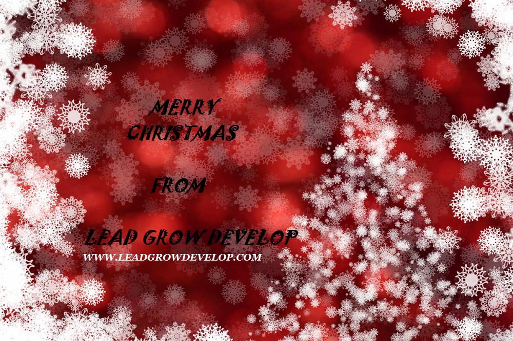 beautiful-backdrop-christmas-holidays