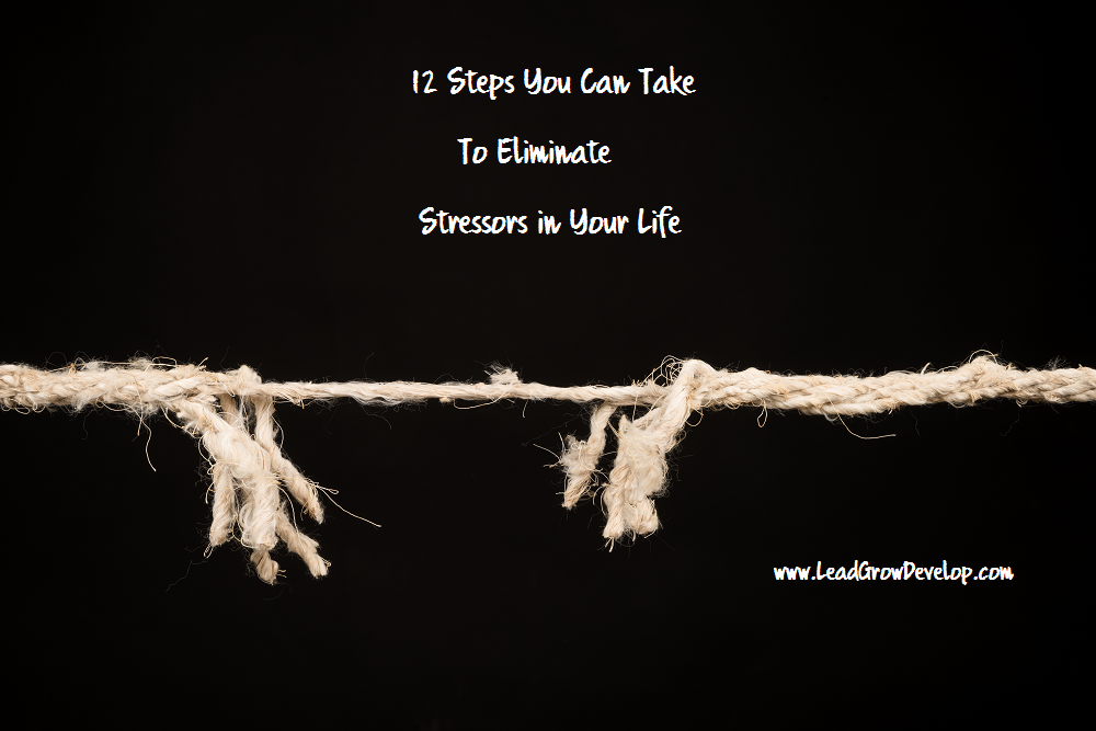 12-steps-to-eliminate-stressors