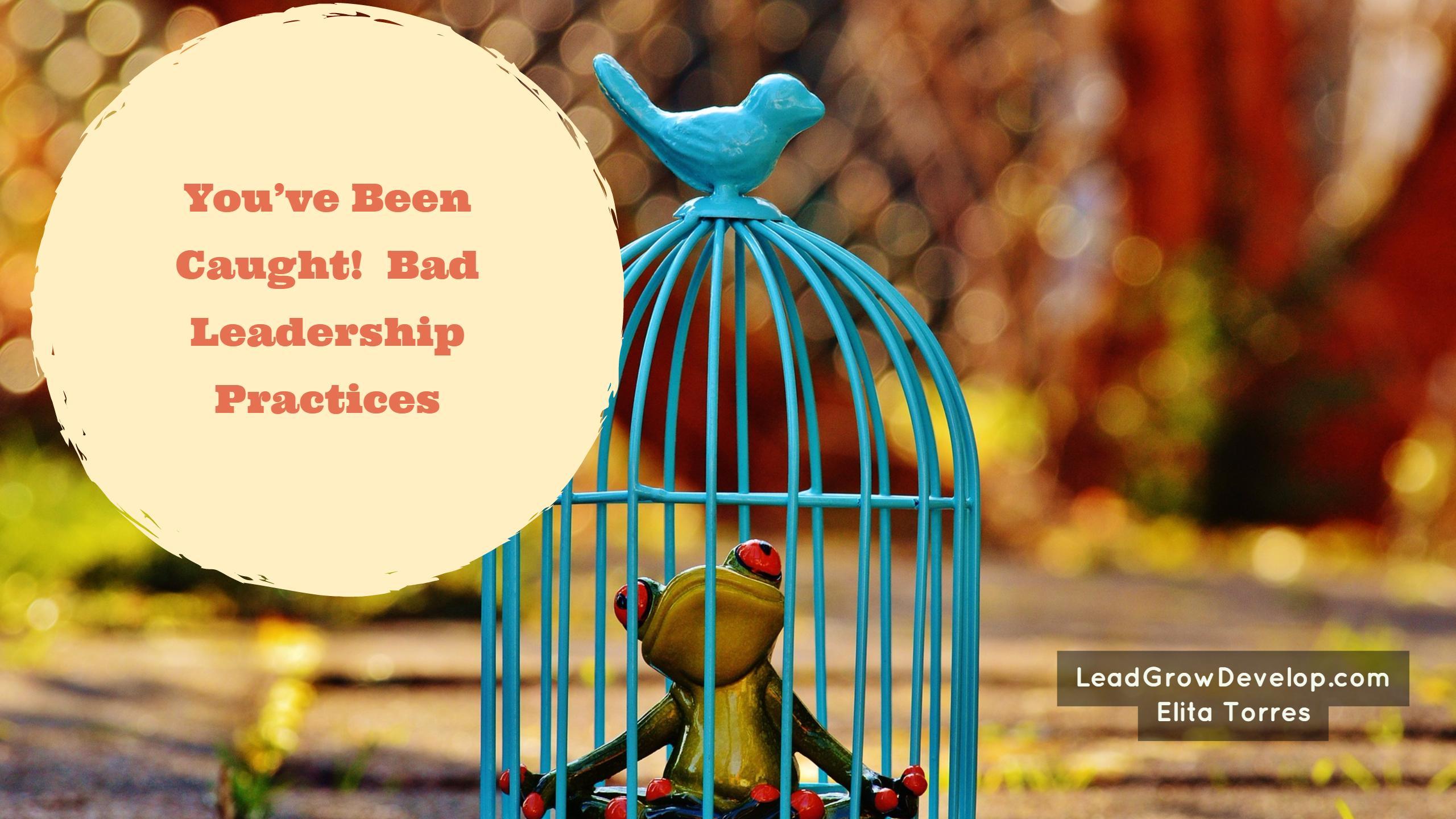 bad-leadership-practices