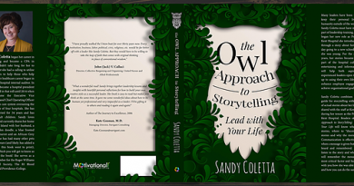 the-owl-approach-to-storytelling