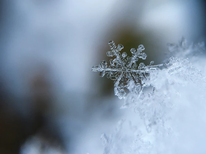 winter-ice-snowflake