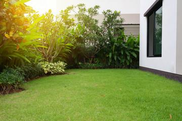lawn-home-home lawn